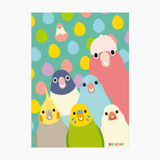 SMILEBIRD A5クリアファイル