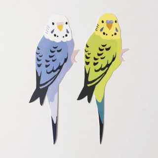 鳥デザインステッカー(セキセイインコ)