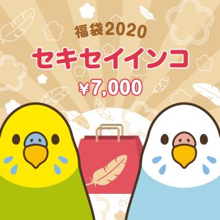金の福袋2020(セキセイインコ)