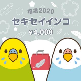 銀の福袋2020(セキセイインコ)
