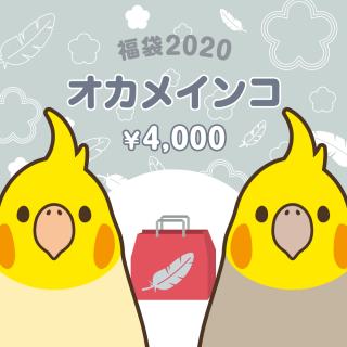 銀の福袋2020(オカメインコ)