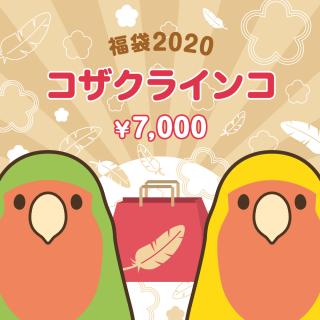 金の福袋2020(コザクラインコ)