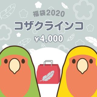 銀の福袋2020(コザクラインコ)
