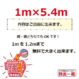汎用1m×5.4m